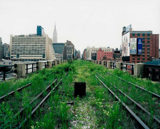 "From the series ""Walking the High Line"""